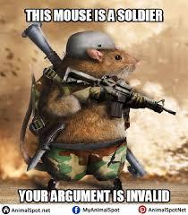 Mouse Memes - mouse memes photos png