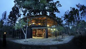 best seven extremely charming tree house resorts in india