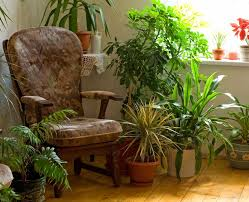 floor decorations home decorations decorations corner space with rustic armchair also
