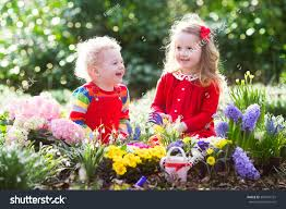 family gardening children planting spring flowers sunny garden stock photo