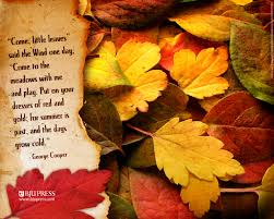 quotes about beauty of fall autumn wallpapers download group 85