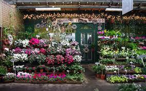 flower shops parisian flower shop st s day in les studios de