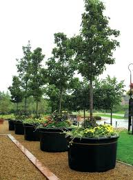 planters black plastic pots with handles planter plant of gold