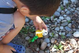 summit toys review backyard safari outfitters u0026 test pilot toys