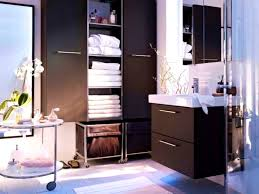 Ikea Kitchen Cabinets In Bathroom Accessoriesdrop Dead Gorgeous Bathroom Cabinet Over Toilet Ikea