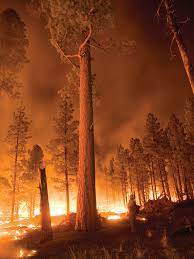 Wildfire Book Summary by Mountain Outlaw Magazine The Coming Infernos Explore Big Sky