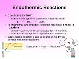 the chemistry of life chemical basis of life enzymes ppt download