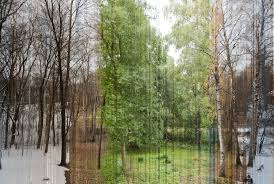 norwegian photographer captures four seasons in a single image
