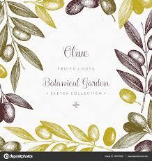 olive branch wreath template u2014 stock vector geraria 145187663