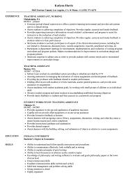 teaching assistant resume teaching assistant resume sles velvet