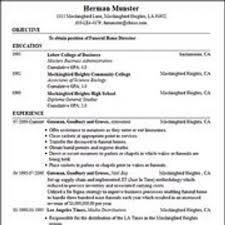 Fake Work Experience Resume Fake Resume Example Government Resume Remarkable Fake Work