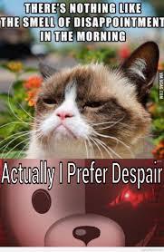 Grumpy Cat Monday Meme - otaku meme anime and cosplay memes grumpy cat and monokuma s