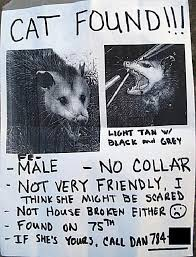 Lost Cat Meme - 20 funny lost and found pet posters