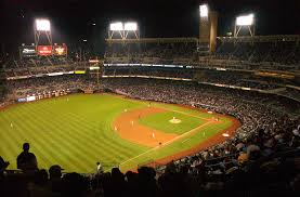 a baseball field is like the cytoplasm it holds in the mound all