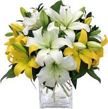 yellow lilies send flowers to mumbai flowers to mumbai online lilies