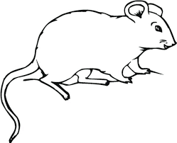 coloring page of a rat rat pictures to color fat mouse and rat coloring pages rat rod