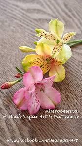 mail flowers 724 best gum paste flower images on sugar flowers gum