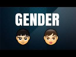 gender ल ग cbse class 6 hindi grammar youtube