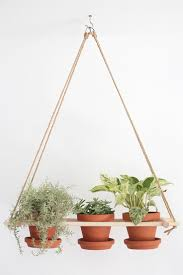 Modern Hanging Planters by Best 25 Indoor Hanging Planters Ideas On Pinterest Hung Vs