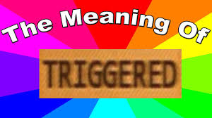 What Means Meme - what is a triggered meme the meaning and definition of triggered