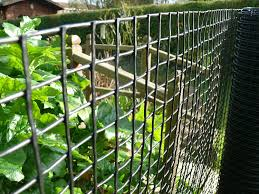 plastic garden fencing 1m x 25m black 20mm holes clematis netting