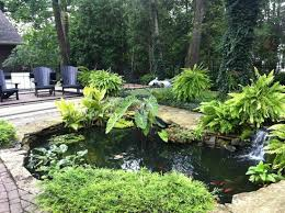 Backyard Sitting Area Ideas Backyard Sitting Area Small Pond With Fish Picture Of Historic