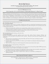 summary for resume resume career summary exles globish me