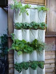 kitchen herb planter indoor herb garden ideas bittergurka planter