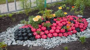 Bottle Garden Ideas Amazing Plastic Bottle Gardening Ideas Bottle Gardening