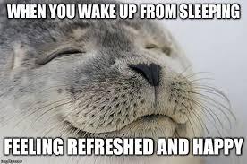 Sleeping In Meme - getting good sleep is hard imgflip