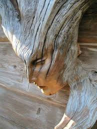 cool wood carvings 608 best carving images on carved wood carving wood