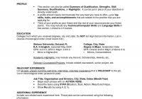 Resume Examples For It Us Resume Format For Experienced It Professionals And Professional