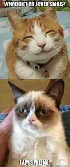 Smiling Cat Meme - why don t you ever smile i am smiling grumpy cat vs happy cat