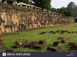 relief of an elephant terrace of elephants angkor siem reap
