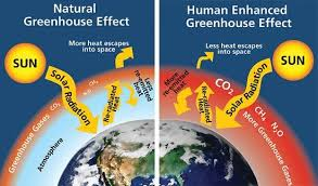 global warming causes and effects what is the role of greenhouse gases in global warming socratic