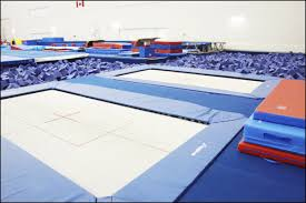 grande prairie gymnastics u0026 cheer community knowledge campus