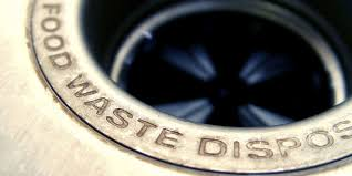 Kitchen Disposal by Things That You Should Never Put In The Garbage Disposal Food