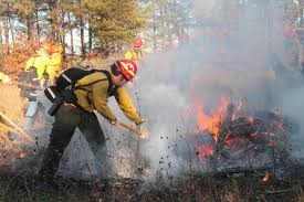 Wildfire Training by Students Combat Wildfires The Pointer