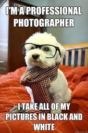 Photography Meme - photography meme google search art memes pinterest meme