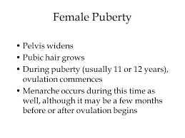 heavy pubic hair chapter 3 female sexual anatomy and physiology ppt video online