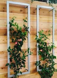 House Of Trelli Best 25 Wall Trellis Ideas On Pinterest Trellis Diy Garden