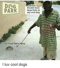 Cool Dog Meme - freakin love park dogs look at my cool dog lol woof bark haha i luv