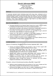 professional cv examples free download within 23 terrific example
