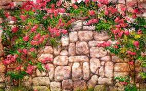 flowers wall wallpapers flowers wall stock photos