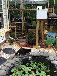 news from saint francis wild bird hospital keeping cats and birds