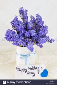 Mother S Day 2017 Flowers by Bluebell Flowers Bouquet In A Vase And Happy Mothers Day Note