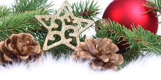 free star pine cones christmas tree christmas ornament ebay