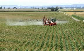chambre agriculture alsace alsace l agriculture victime et responsable