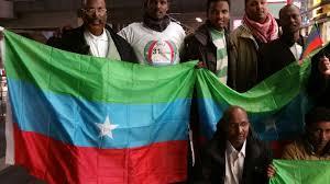Oromo Flag Ogaden News Agency Ona U2013 Ogaden And Oromo Communities