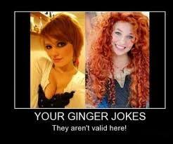 Redhead Meme - image result for redhead memes red hot ginger pinterest